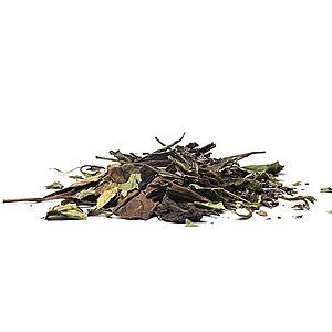 CHINA PAI MU TAN - bílý čaj, 100g obraz