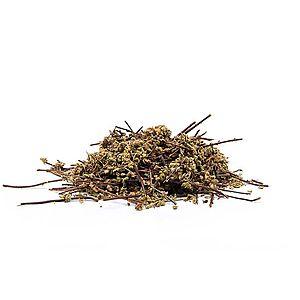 CUTI CUTI (Asplenium lunulatum) - bylina, 50g obraz