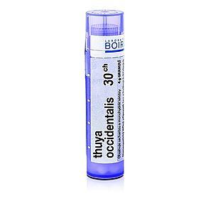 Boiron THUYA OCCIDENTALIS CH30 granule 4 g obraz