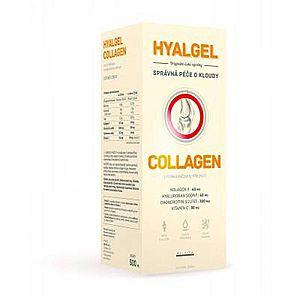 Hyalgel Collagen 500 ml obraz