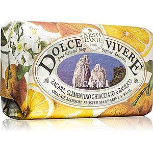 Nesti Dante Dolce Vivere Capri přírodní mýdlo 250 g obraz