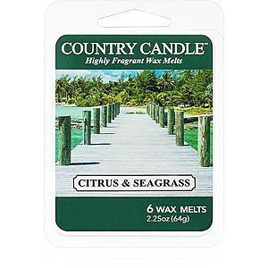 Country Candle Citrus & Seagrass vosk do aromalampy 64 g obraz