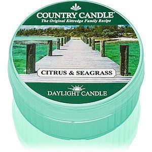 Country Candle Citrus & Seagrass čajová svíčka 42 g obraz