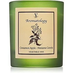 Vila Hermanos Aromatology Cinnamon and Apple vonná svíčka 200 g obraz