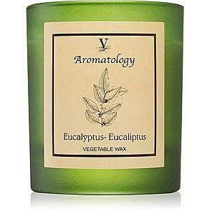 Vila Hermanos Aromatology Eucalyptus vonná svíčka 200 g obraz