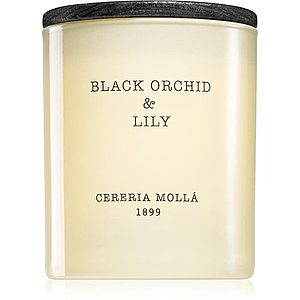 Cereria Mollá Boutique Black Orchid & Lily vonná svíčka 230 g obraz